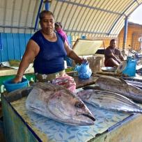 Big fish at Negombo